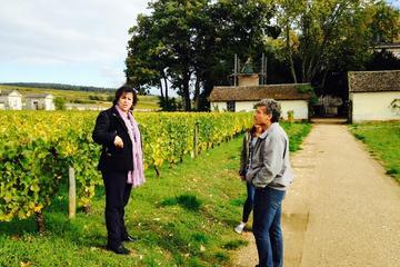 Excursion privée: excursion d'une journée en Bourgogne avec...