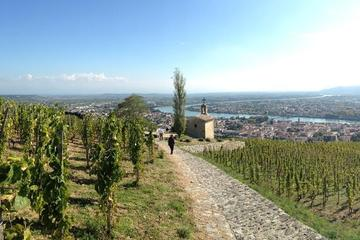 Full Day Cotes du Rhone Wine Tour...