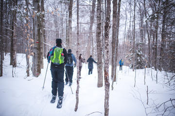 Quebec Ski-Shoeing Excursion