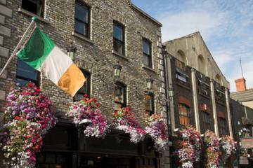 Promenade à pied dans les quartiers historiques de Dublin et au...