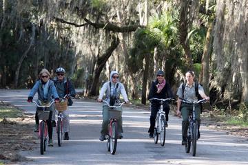 Wild Myakka Bike Ecotour