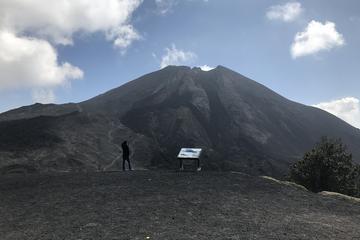 Pacaya Volcano Tour from Guatemala City