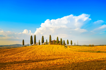 Tagesausflug von Florenz in kleiner Gruppe zur Weinregion die...
