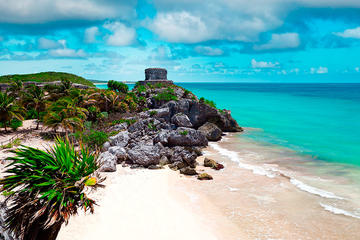 4X1 (4TOURS FOR 1 PRICE) TULUM, COBÁ, CENOTE SWIM AND PLAYA DEL CARMEN