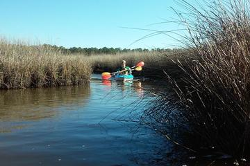 Day Trip Bon Secour National Wildlife Refuge Kayak Tour near Gulf Shores, Alabama