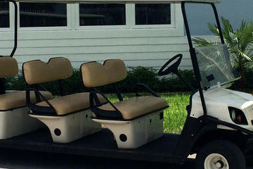 Street Legal Golf Cart Rental in Fort...