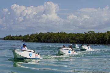 Book Key West Safari Snorkel Adventure on Viator