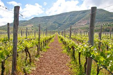 Heraklion Wine Roads