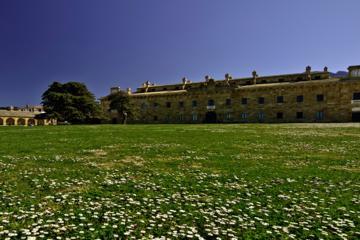 Corleone Museum of Mafia and Ficuzza Village Half-day Tour from...