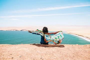 Escapada de un día completo a Paracas...