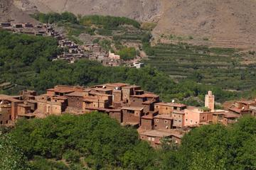 Atlas Mountains including Camel Ride and Berber Guest House Day Tour...