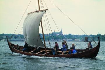 Grande excursion d'une journée dans Copenhague