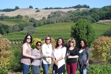 Northern Sonoma Small Group Wine Tour