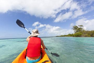 The Top Things To Do In Antigua Must See Attractions In - The florida kayaking guide 10 must see spots for paddling