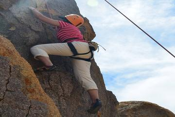 All-Day Rock Climbing Adventure in Joshua Tree National Park