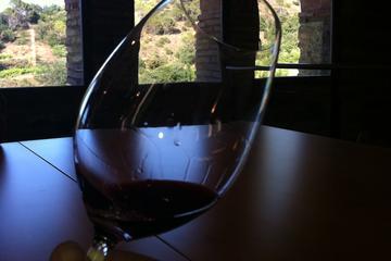 Circuit des vins privé d'une journée et expérience au massif de...
