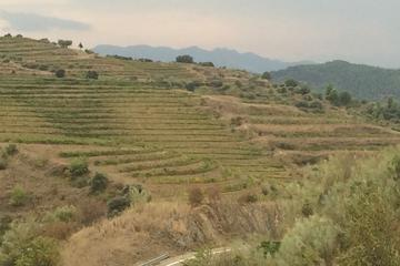 PRIORAT PRIVATE WINE TOUR