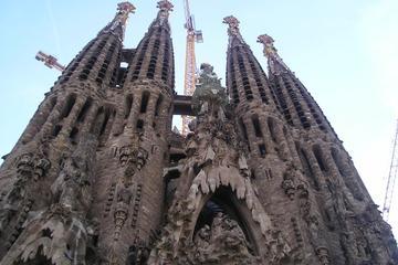 Visite d'une demi-journée à Barcelone avec chauffeur-guide local