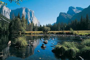 Gita di un giorno privata al Parco Nazionale di Yosemite da San