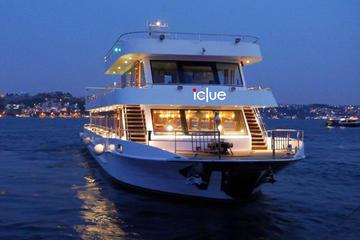 Crucero con cena por la tarde en el Bósforo desde Estambul