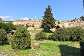 Tour giornaliero privato di Pompei e della costiera amalfitana