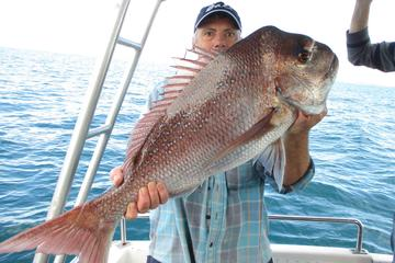Gold Coast Half-Day Fishing Charter