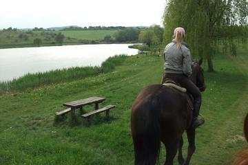 Horse riding near Budapest