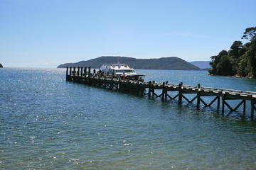 Full-Day Marlborough Catamaran Cruise...