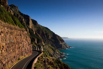 Cape Peninsula Guided Private Day...