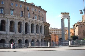 VIP Tour of Rome, Colosseum & Vatican...