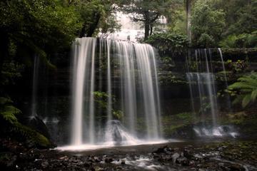 ホバート発マウント フィールド国立公園日帰り旅…
