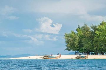 Phi Phi Bamboo Island By Speed Boat...