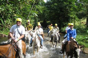 Horseback Riding Adventure at Turubari Eco Park and Rainforest Aerial Tram