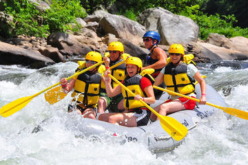 Private Combo Tour: Whitewater Rafting and Canopy