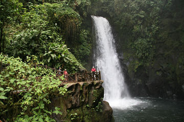 Private Tour to La Paz Waterfall...