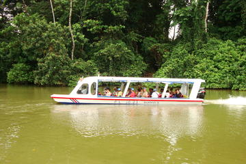Shore Excursion: Tortuguero Canal Eco...