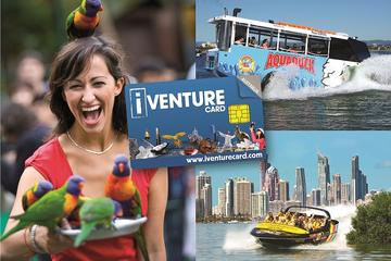Gold Coast Attraction Pass Including Currumbin Wildlife Sanctuary and...
