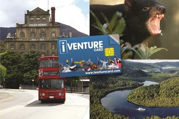 Tasmania Sightseeing Pass:3-Day Flexi Card
