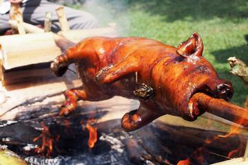 Seminyak Pork Hunting Tour