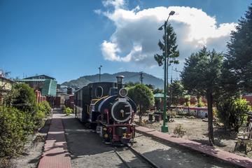 Experience Darjeeling Toy Train Joyride With Optional Transportation