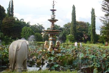 Garden of the Maidens (Sahelion Ki Bari) Admission Ticket with Optional Transfer