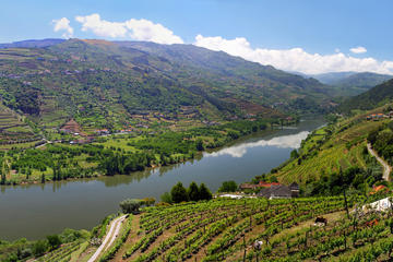 Full-Day Tour: Douro Valley Trip from Porto