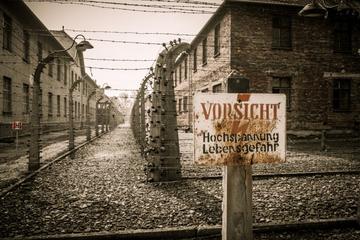 Tour di un giorno a Cracovia e Auschwitz da Varsavia