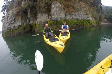 Kayak Brookings Chetco River