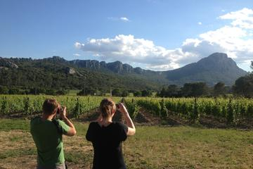 Hiking Tour to Pic St Loup with Wine...