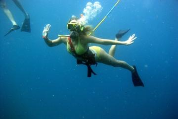Aventure en snuba aux Bahamas à Nassau