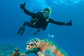 Excursão no litoral de Nassau: Aventura de mergulho de 2 tanques