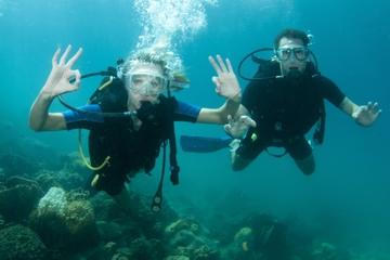 Viagem com mergulho em 2 tanques saindo de Nassau