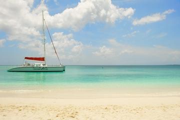 Croisière en catamaran à Grand Cayman avec plongée libre à Stingray...