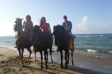 Beach and Mountain Horseback Riding Vacation